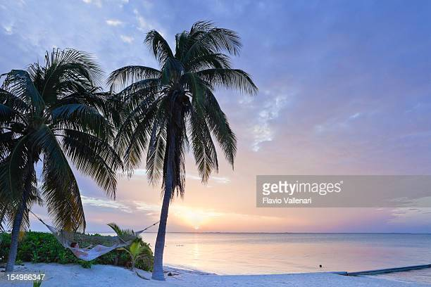 Rum point beach in grand Cayman at dawn