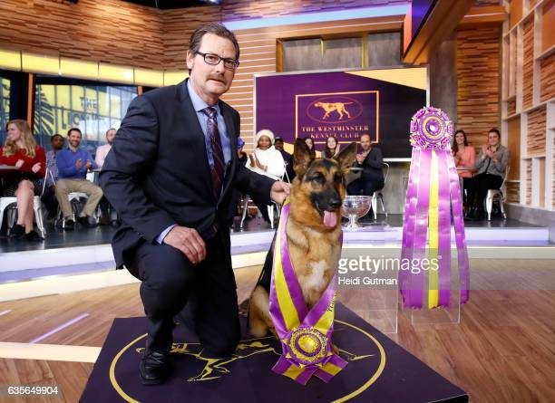 AMERICA Rumor a German shepherd was named best in show at the 141st Westminster Kennel Club Dog Show Rumor is a guest on 'Good Morning America'...