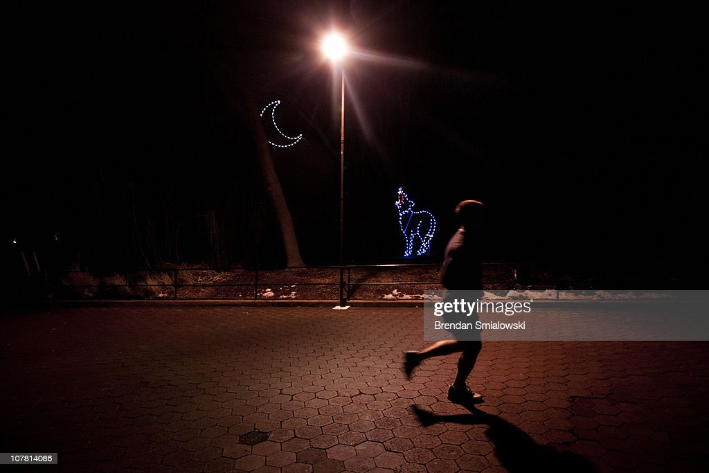 A runner jogs through the Smithsonian's National Zoo December 29, 2010 in Washington, DC. The National Zoo decorated its main walk with holiday lights and other decorations for its yearly Zoo Lights celebration.