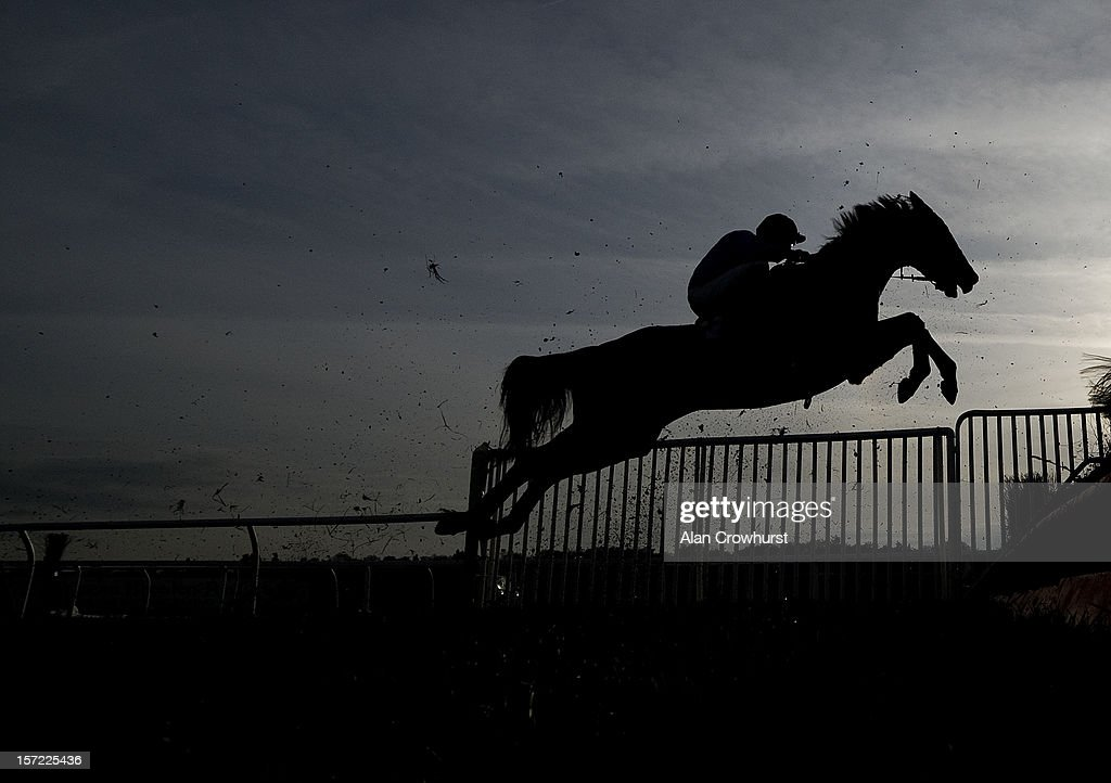 A runner leaps a fence during The Sanderson Westherall Ladies Are Ageless Conditional Jockeys' Handicap Steeple Chase at Newbury racecourse on November 30, 2012 in Newbury, England.