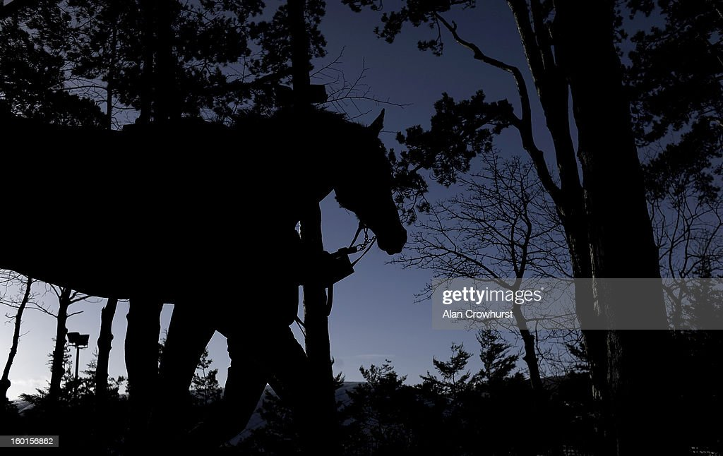 A runner makes its way to the parade ring at Leopardstown racecourse on January 27, 2013 in Dublin, Ireland.