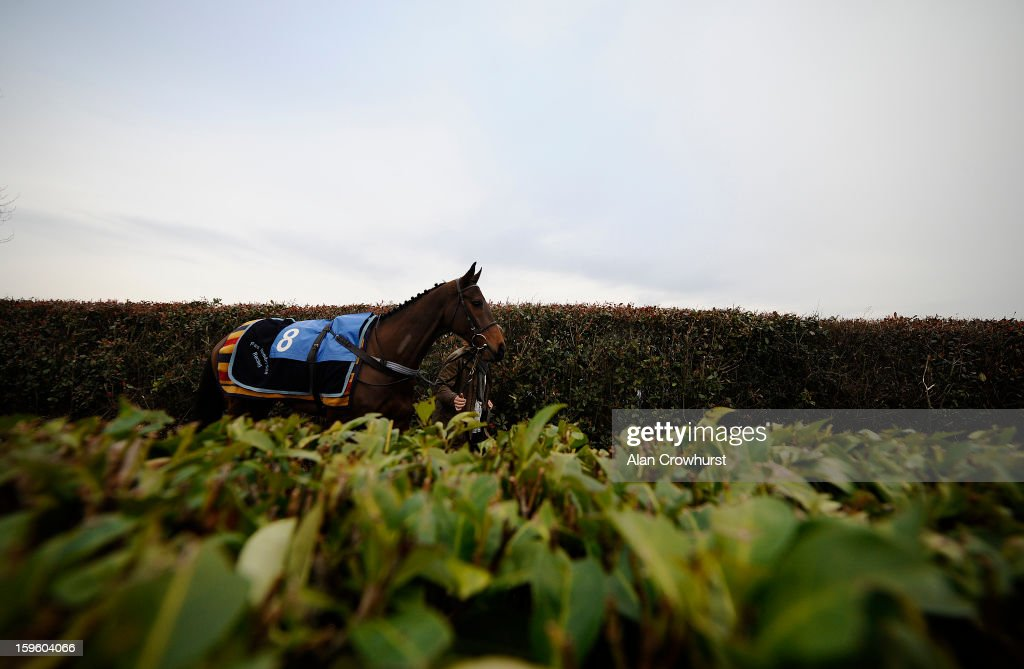 A runner makes its way to the parade ring at Wincanton racecourse on January 17, 2013 in Wincanton, England.