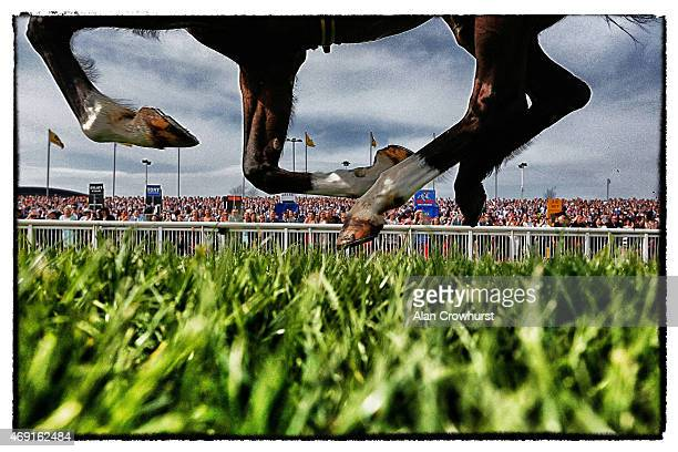 A runner passes the crowd on day two of the three day Grand National meeting at Aintree racecourse on April 10 2015 in Liverpool England