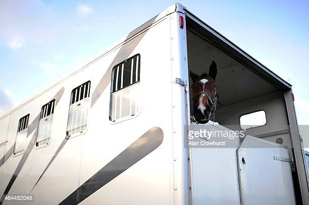 A runner waits in its horsebox during the point to point meeting at Barbury Castle racecourse on December 08 2013 in Swindon England