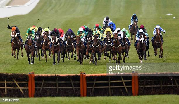 Runners and riders approach the last in the Coral Cup at Cheltenham Racecourse on March 16 2016 in Cheltenham England
