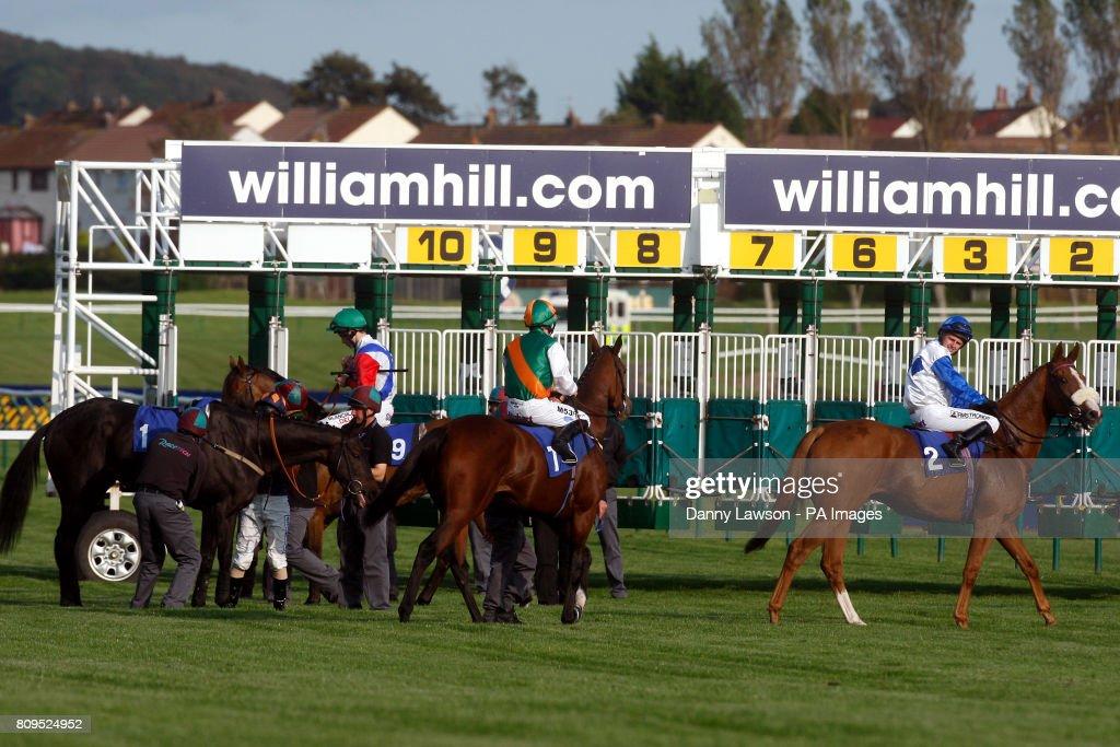William hill ayr gold cup runners win on roulette every time