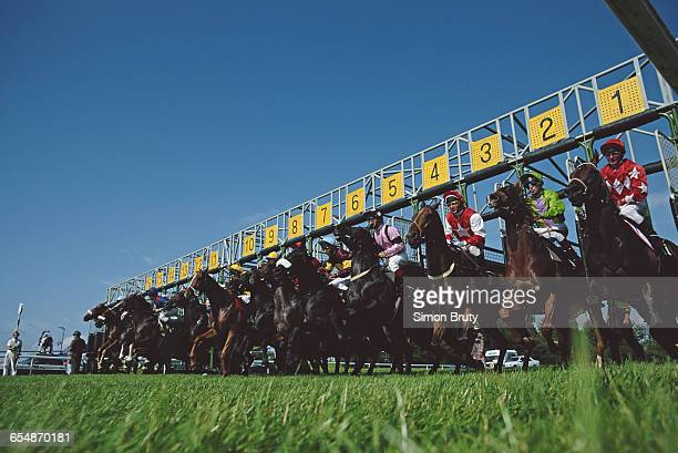 Runners and riders horses and jockeys are released from the stalls for the start of the King George Stakes on 27 July 1991 at the Goodwood Racecourse...