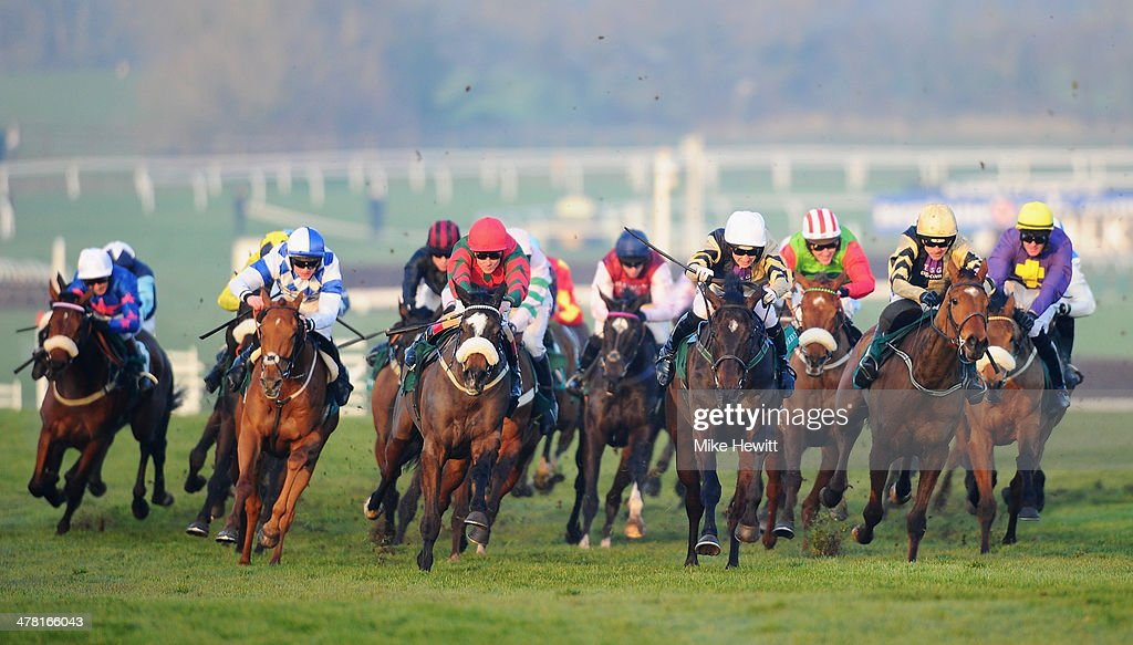 Runners and riders in action in the Weatherbys Champion Bumper during Ladies Day at Cheltenham Festival at Cheltenham Racecourse on March 12 2014 in...