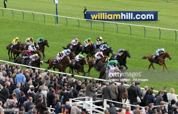 Runners and riders in the William Hill Ayr Gold Cup