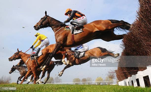 Runners and riders jump the third last in the Stewart Family Spinal Research Handicap Chase at Cheltenham Racecourse on March 15 2011 in Cheltenham...