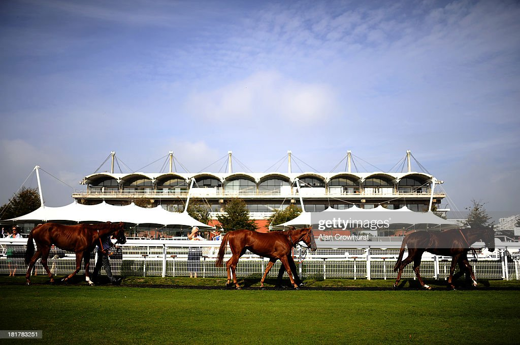 Runners are lead around the pre-parade ring at Goodwood racecourse on September 25, 2013 in Chichester, England.