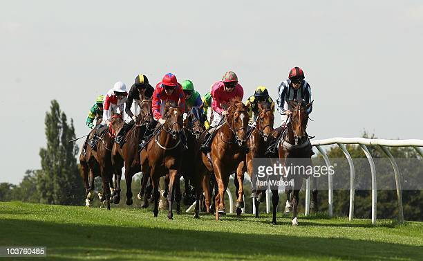 Runners head down the back straight at Lingfield Park during the Gallagher Group Handicap on September 1 2010 in Lingfield England