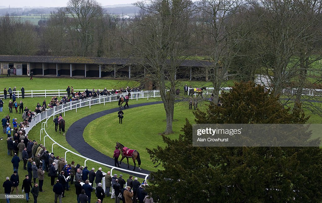 Runners in the parade ring during the last meeting to be held after 114 years of racing at Folkestone racecourse on December 18, 2012 in Folkestone, England.