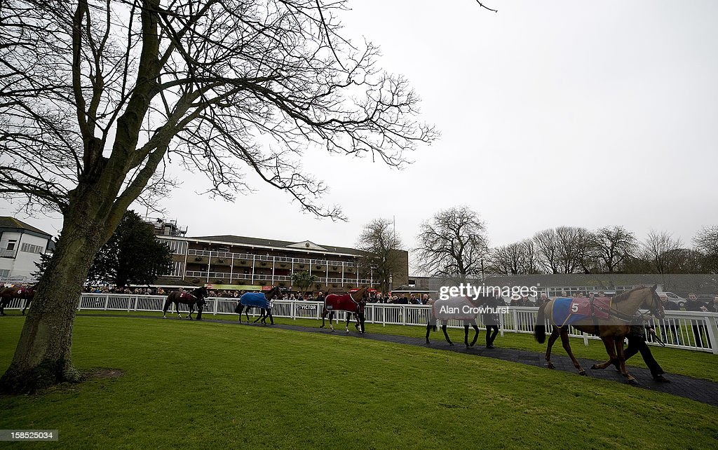 Runners in the pre parade ring during the last meeting to be held after 114 years of racing at Folkestone racecourse on December 18, 2012 in Folkestone, England.