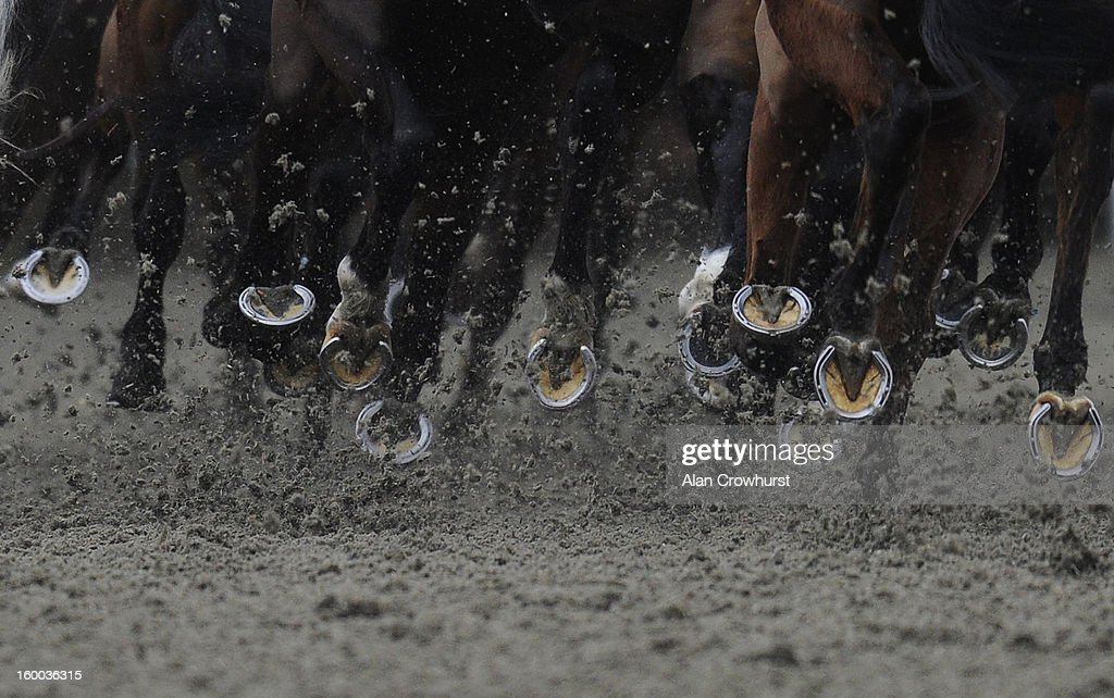 Runners kick up the polytrack surface at Kempton racecourse on January 25, 2013 in Sunbury, England.