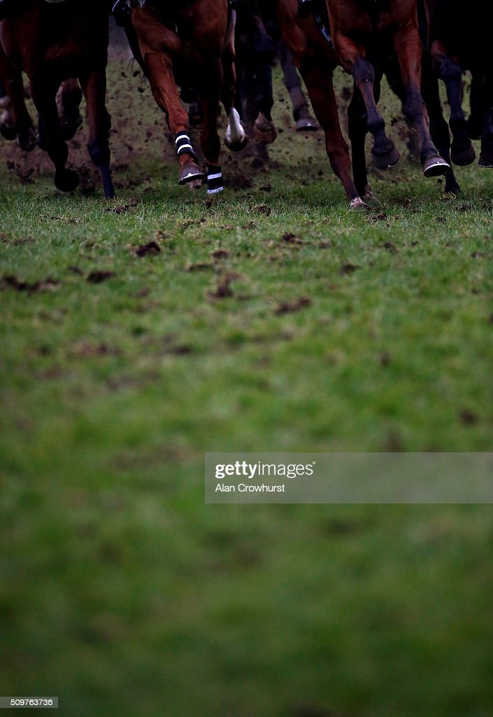 Runners kick up the soft going at Kempton Park racecourse on February 12, 2016 in Sunbury, England.