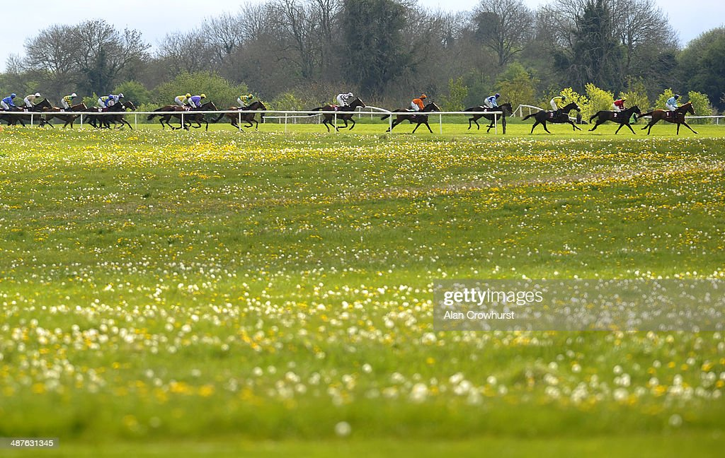 Runners make their way around the cross counry course in The Avon Ri Corporate & Leisure Resort Chase For The La Touche Cup at Punchestown racecourse on May 01, 2014 in Naas, Ireland.