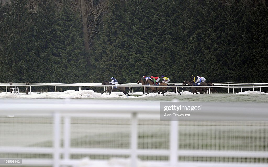 Runners make their way down the back straight in the Betfred Mobile Lotto Juvenile Hurdle Race at Newbury racecourse on January 16, 2013 in Newbury, England.