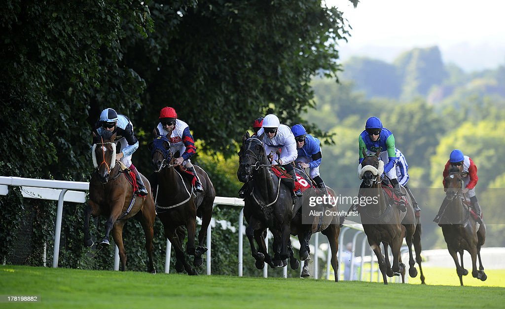 Runners make their way down the back straight in The Chantilly Handicap Stakes at Epsom racecourse on August 27, 2013 in Epsom, England.
