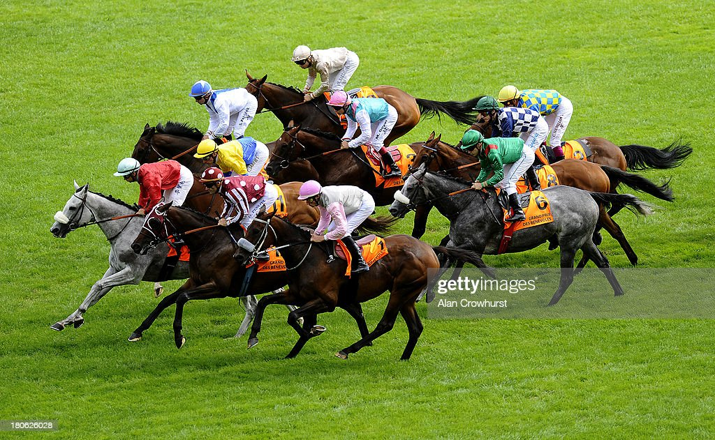 Runners make their way down the track in The Qatar Prix Gladiateur Grand Prix des Benevoles at Longchamp racecourse on September 15, 2013 in Paris, France.