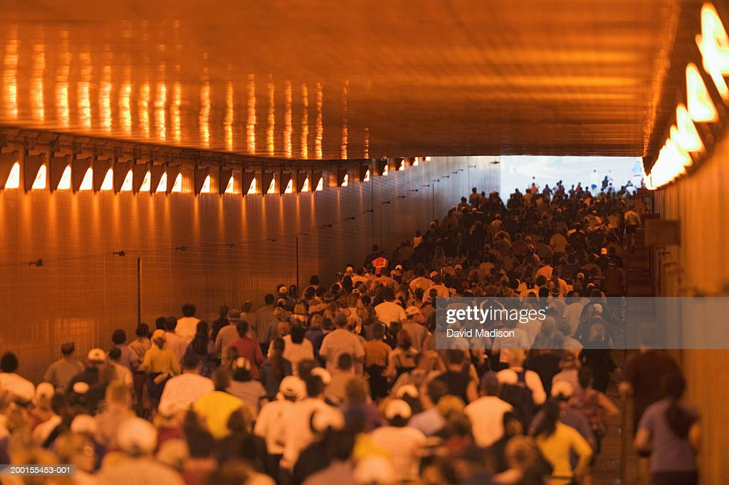 Runners passing through tunnel during road race, rear view : Stock Photo