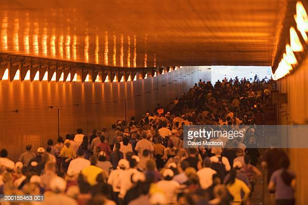 Runners passing through tunnel during road race, rear view