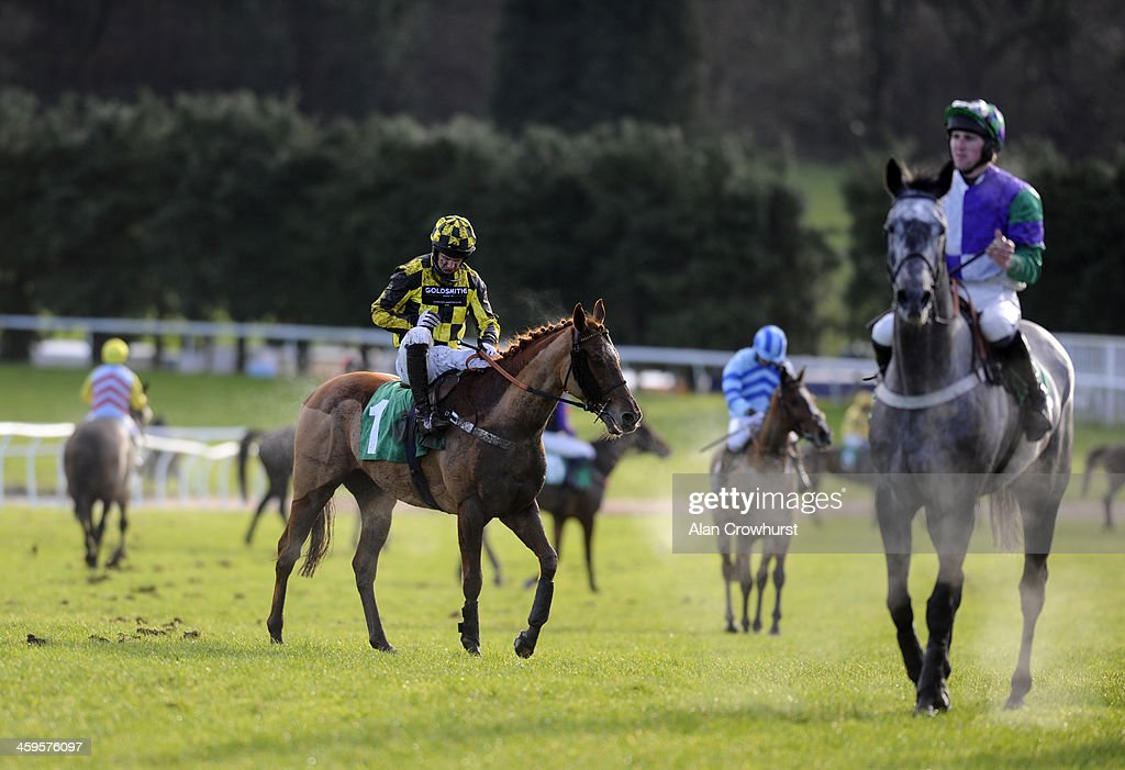 Runners pull up in The Download The Coral Mobile App Maiden Hurdle Race at Chepstow racecourse on December 28, 2013 in Chepstow, Wales.