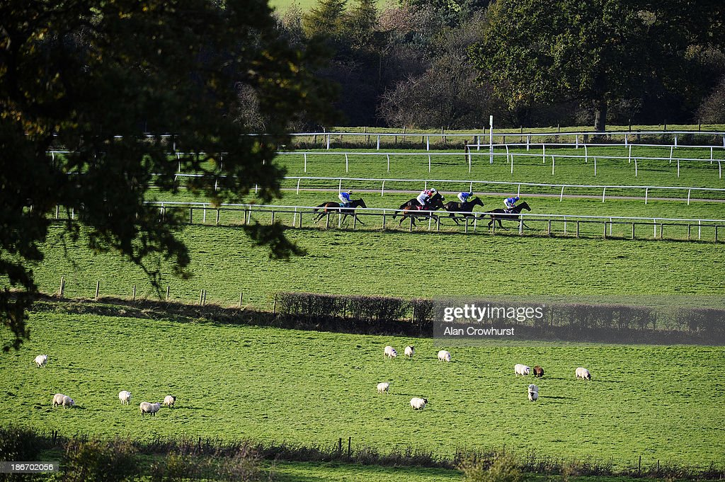 Runners race down the back straight at Carlisle racecourse on November 03, 2013 in Carlisle, England.