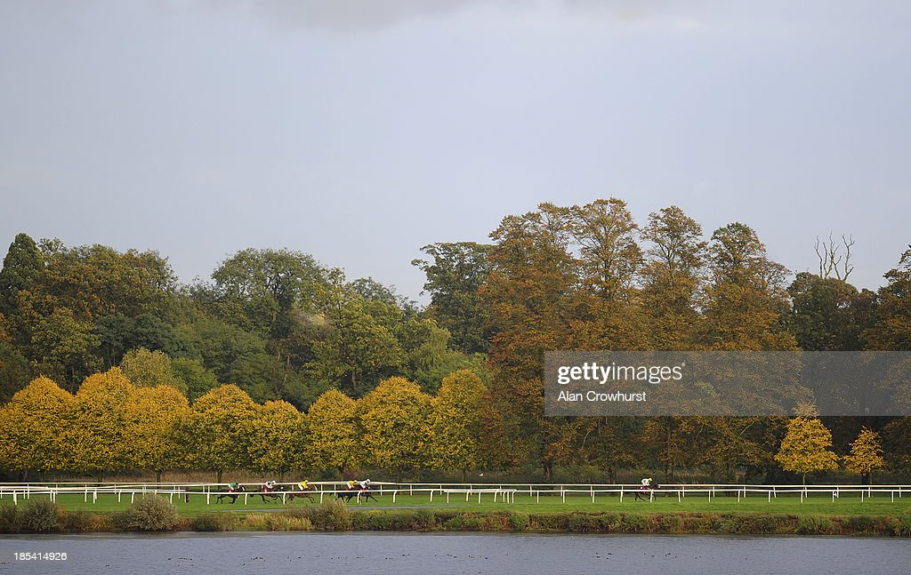 Runners race down the back straight at Kempton Park racecourse on October 20, 2013 in Sunbury, England.