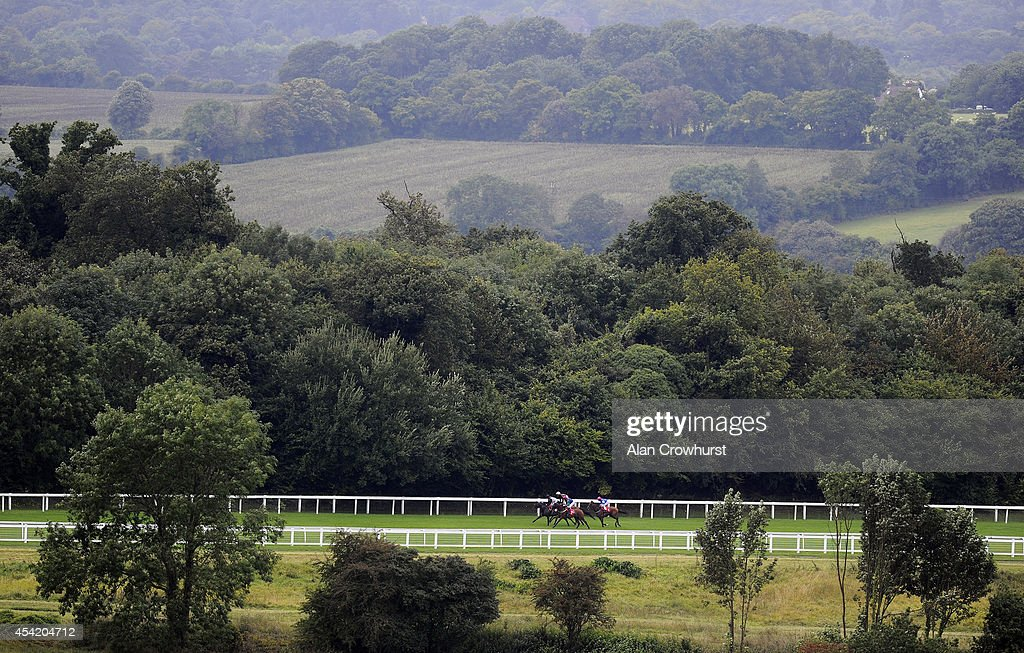 Runners race down the back straight in The Chantilly Handicap at Epsom racecourse on August 26, 2014 in Epsom, England.