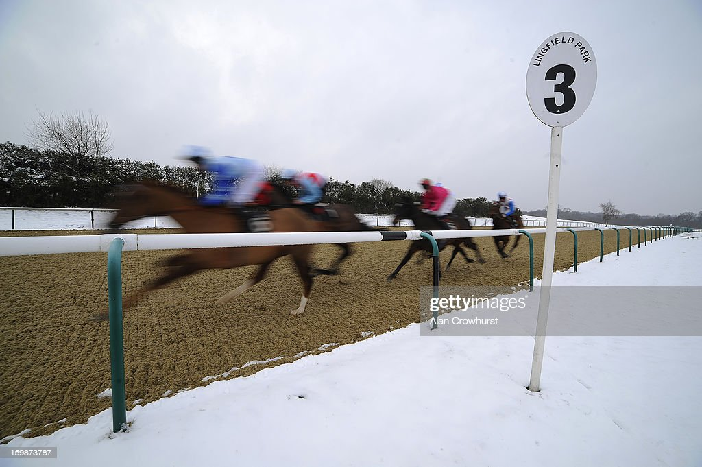 Runners race past the three furlong marker in The Book Hospitality At Lingfield Park Selling Stakes at Lingfield racecourse on January 22, 2013 in Lingfield, England.