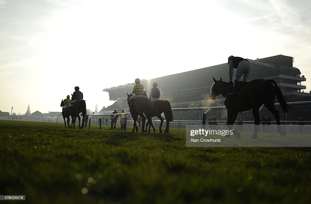 Runners return after being pulled up in The Fulke Walwyn Kim Muir Challenge Cup Handicap Steeple Chase on St Patrick's Thursday during the Cheltenham Festival at Cheltenham racecourse on March 13, 2014 in Cheltenham, England.