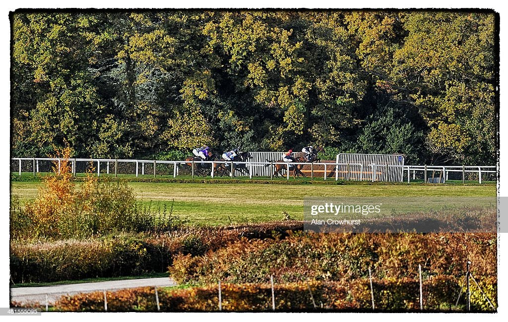 Runners take a fence down the side of the track in The Bam Construct UK Novices' Limited Handicap Steeple Chase at Ascot racecourse on November 23, 2013 in Ascot, England.
