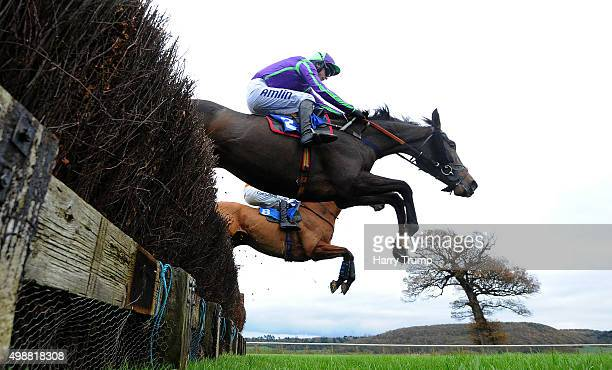 Runners take a jump during the Weatherbys Hamilton Novices Limited Handicap Chase at Taunton Racecourse on November 26 2015 in Taunton England