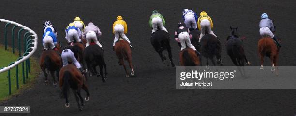 Runners take the first bend in The MidDay Sun Selling Stakes Race run at Lingfield Racecourse on September 9 in Lingfield England