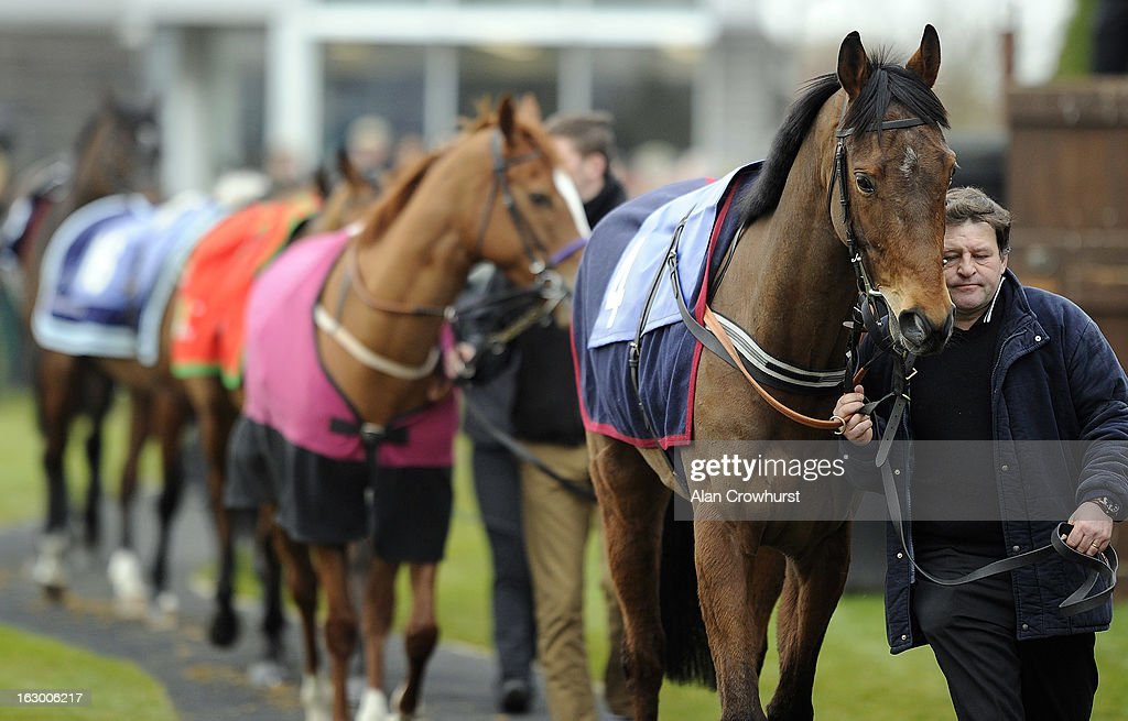 Runners walk around the parade ring at Huntingdon racecourse on March 03, 2013 in Huntingdon, England.