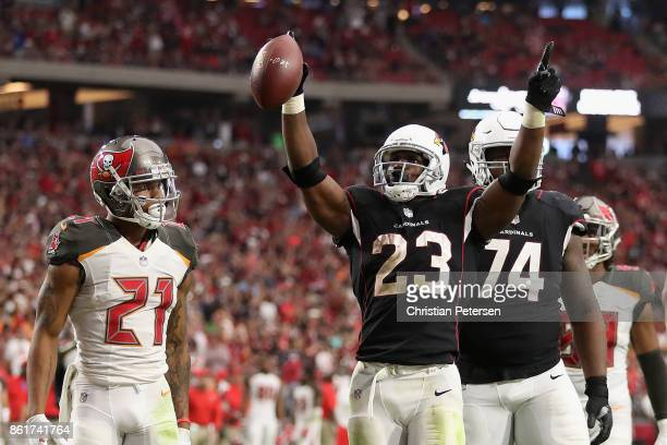 Running back Adrian Peterson of the Arizona Cardinals celebrates after scoring on a one yard rushing touchdown against the Tampa Bay Buccaneers...