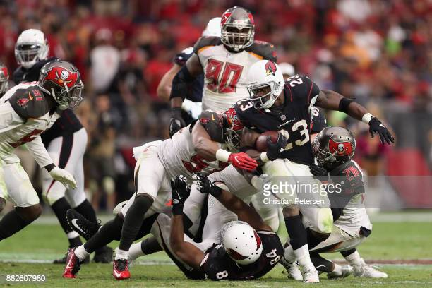 Running back Adrian Peterson of the Arizona Cardinals rushes the football during the NFL game against the Tampa Bay Buccaneers at the University of...