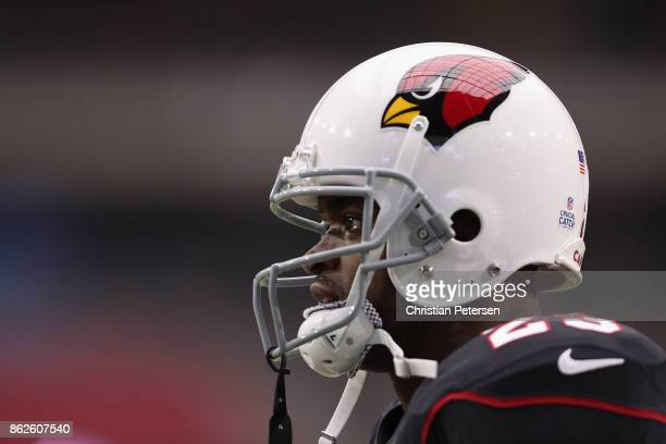 Running back Adrian Peterson of the Arizona Cardinals warms up before the NFL game against the Tampa Bay Buccaneers at the University of Phoenix...