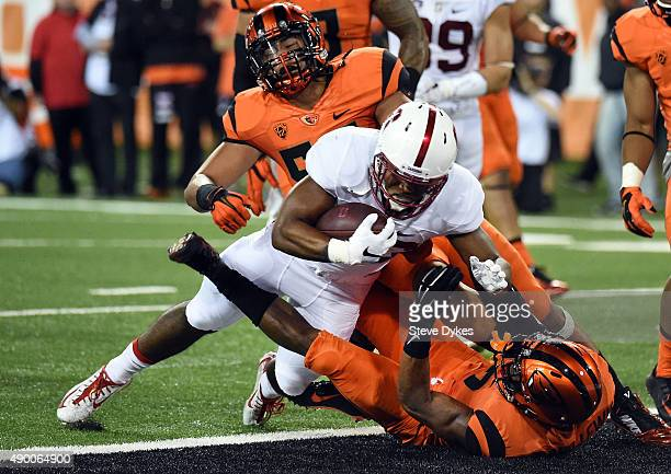 Running back Barry Sanders of the Stanford Cardinal runs over safety Cyril NolandLewis and linebacker Manase Hungalu of the Oregon State Beavers for...
