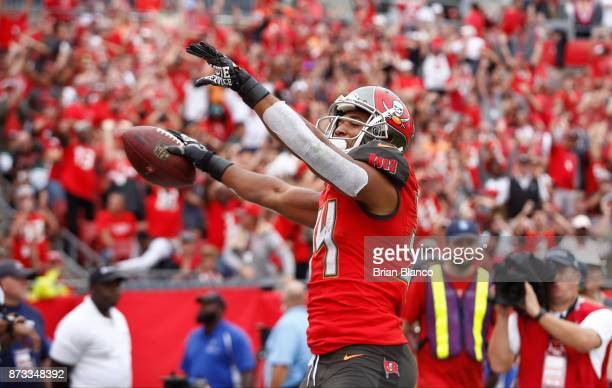 Running back Charles Sims of the Tampa Bay Buccaneers celebrates his touchdown during the fourth quarter of an NFL football game against the New York...