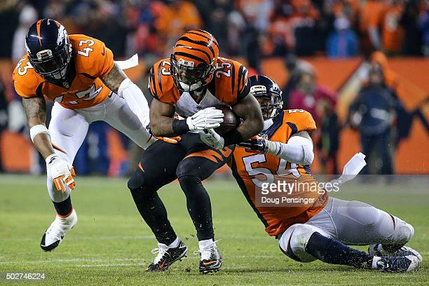 Running back Giovani Bernard of the Cincinnati Bengals is stopped by inside linebacker Brandon Marshall of the Denver Broncos and strong safety TJ...