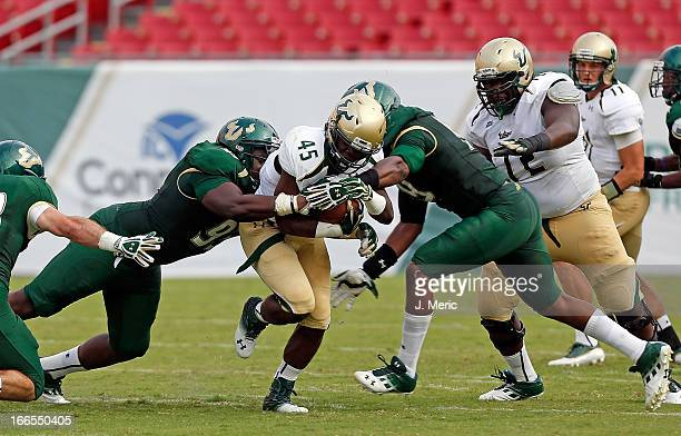 Running back Michael Pierre of the white team splits two defenders of the green team of the South Florida Bulls during the annual Spring Game at...