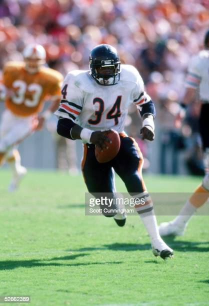 Running Back Walter Payton of the Chicago Bears carries the ball against the Tampa Bay Buccaneers at Tampa Stadium on October 6 1985 in Tampa Florida...