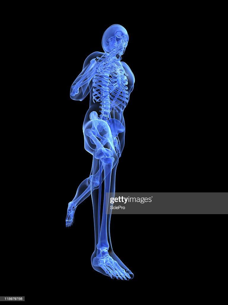 Running Man Anatomy Stock Photo | Getty Images