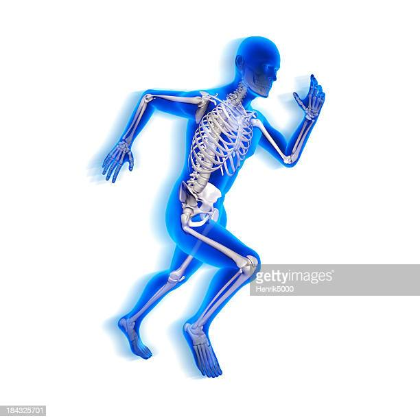 Running man x-ray isolated on white with clipping path