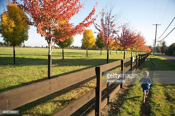 Running Wax Orchard