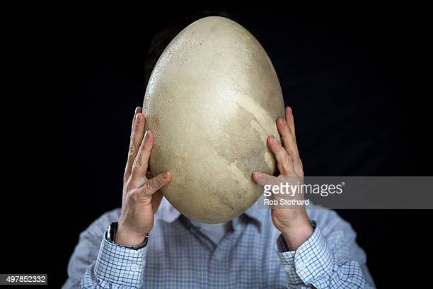 Rupert van der Werff auctioneer holds an intact Aepyornis egg estimated to sell for 3000050000 GBP at Summers Place Auctions on November 19 2015 in...
