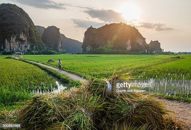 Rural countryside in North Vietnam