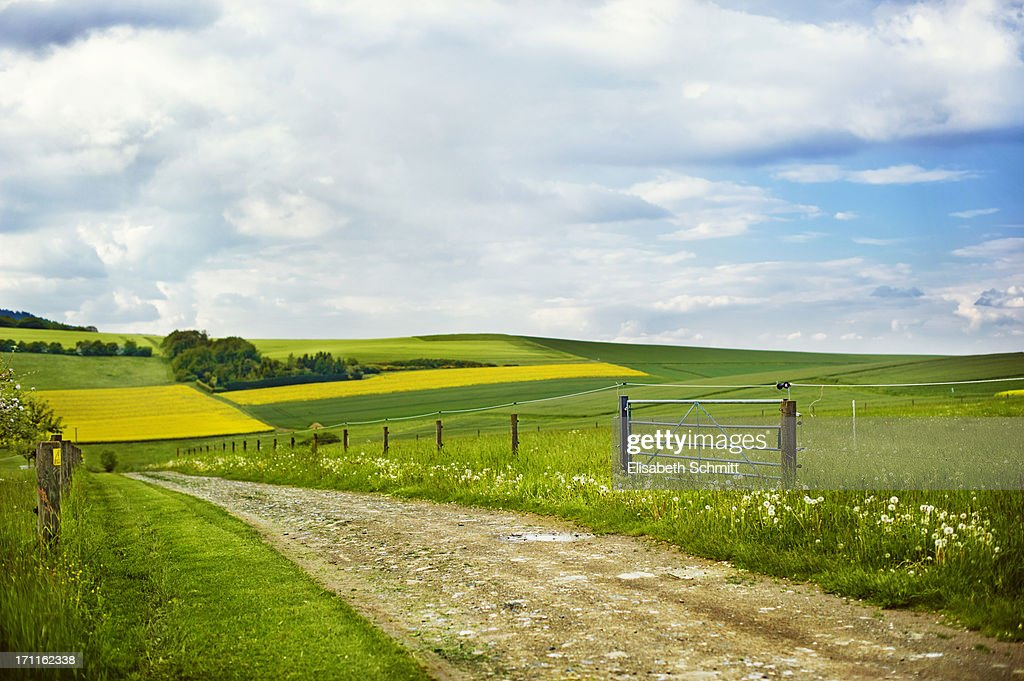 Rural dirt lane through hills with fields